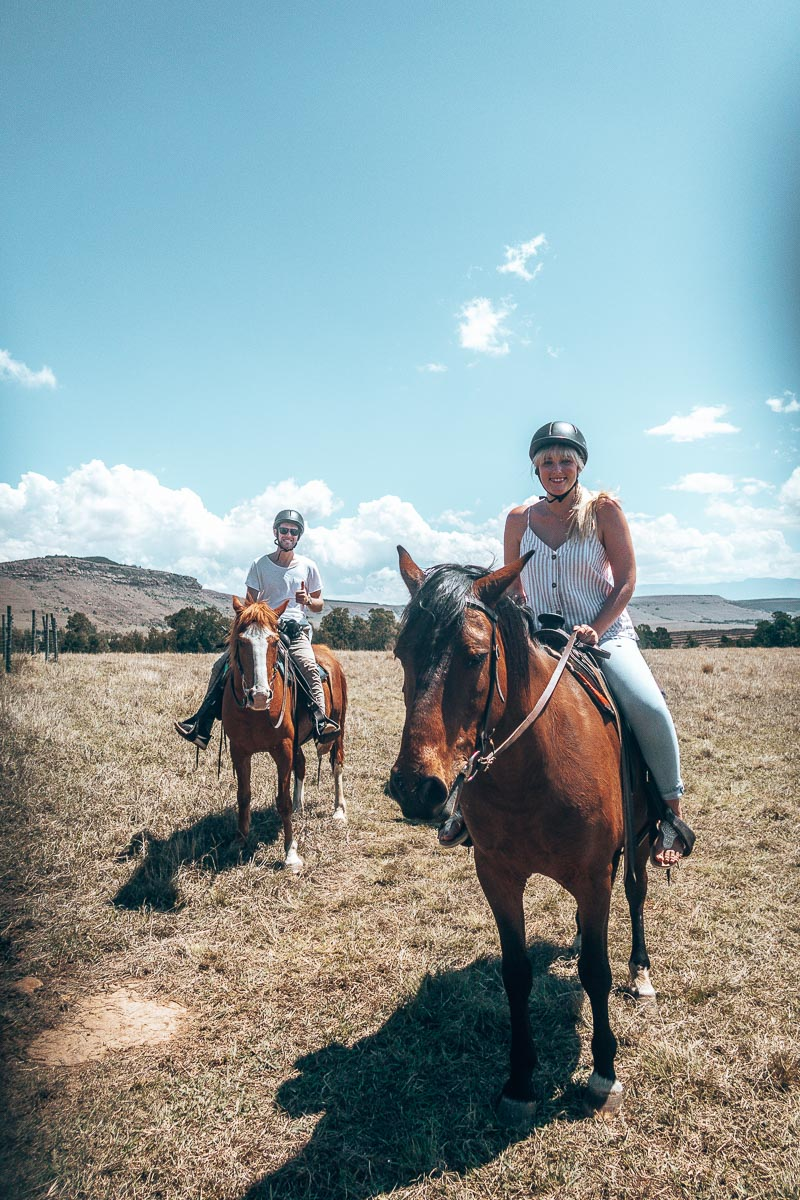 Riding Horses at Antbear Lodge