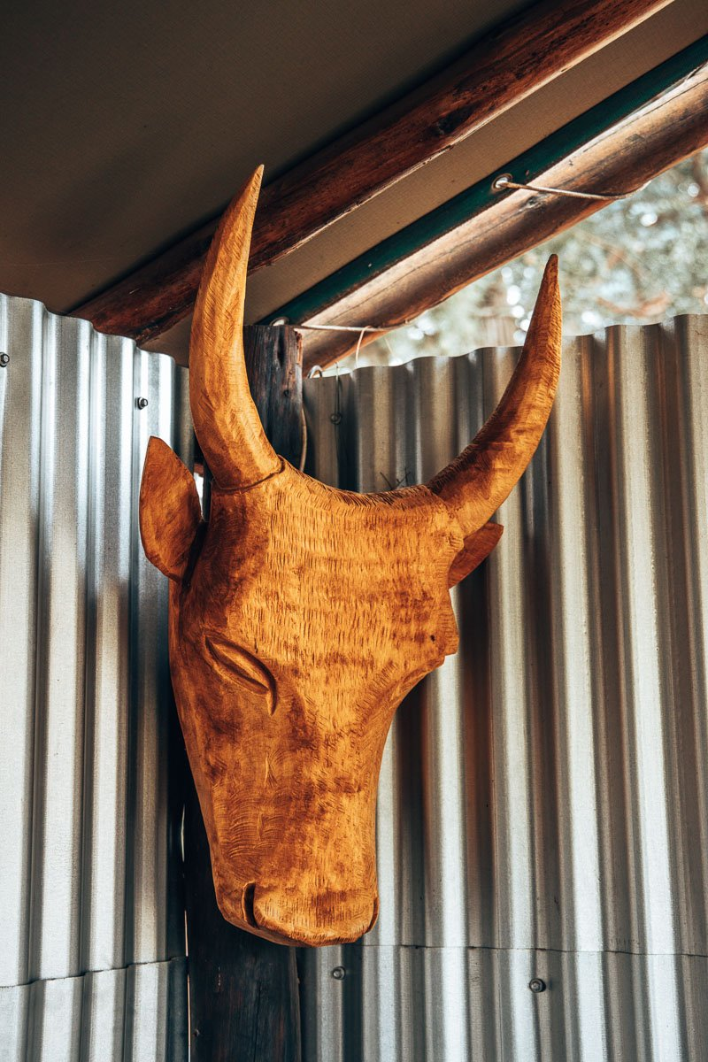 Bull head carved out of wood