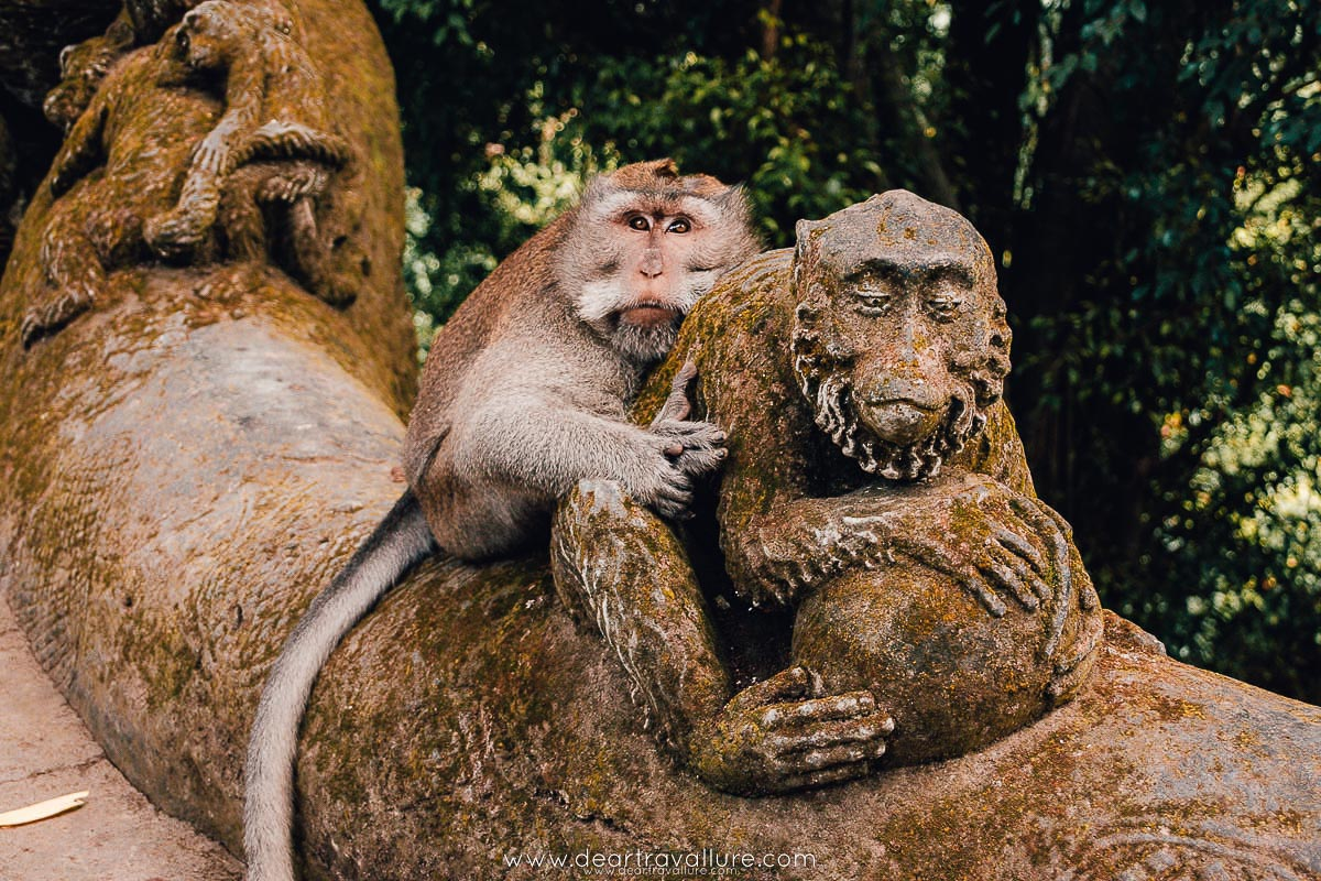 Cute Monkey Hugging a Monkey Statue at The Monkey Forest