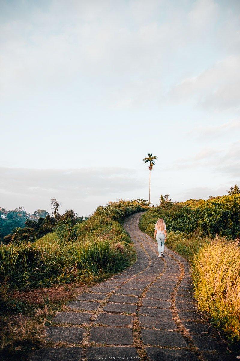 Tammy Walking on the Campuhan Ridge Walk in Ubud
