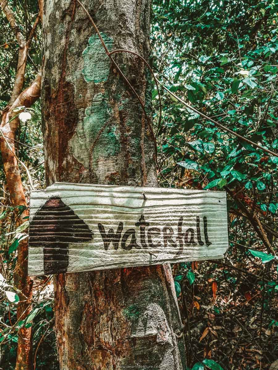 A wooden sign along the path