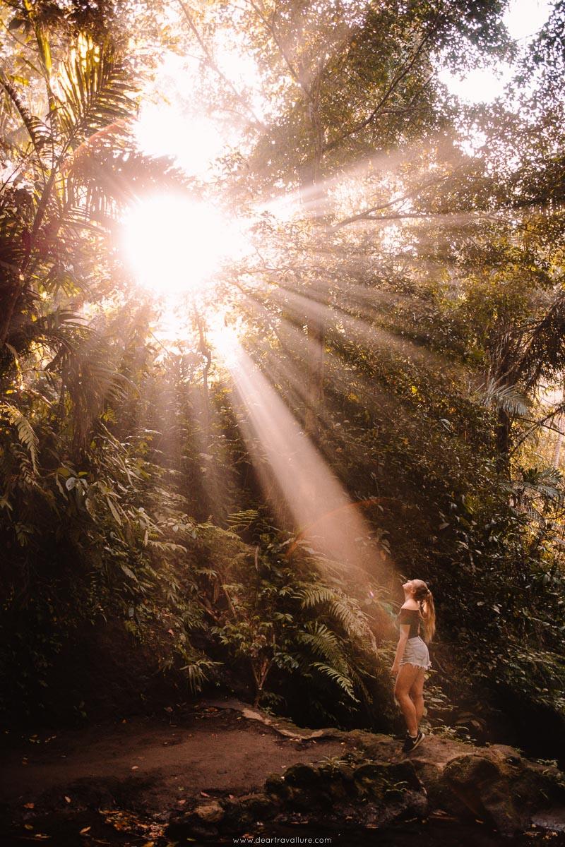 Sun Rays Streaming through the trees at Pengempu Waterfall
