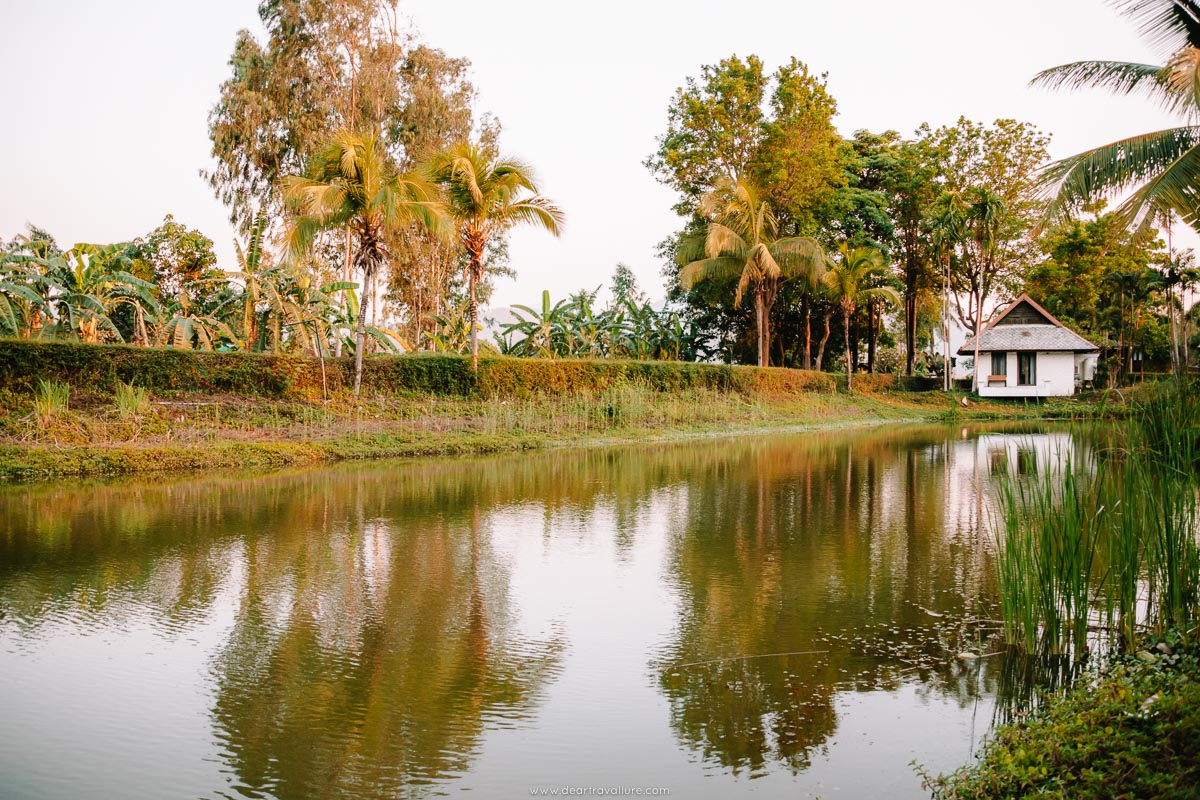The lake at Bura Lumpai resort
