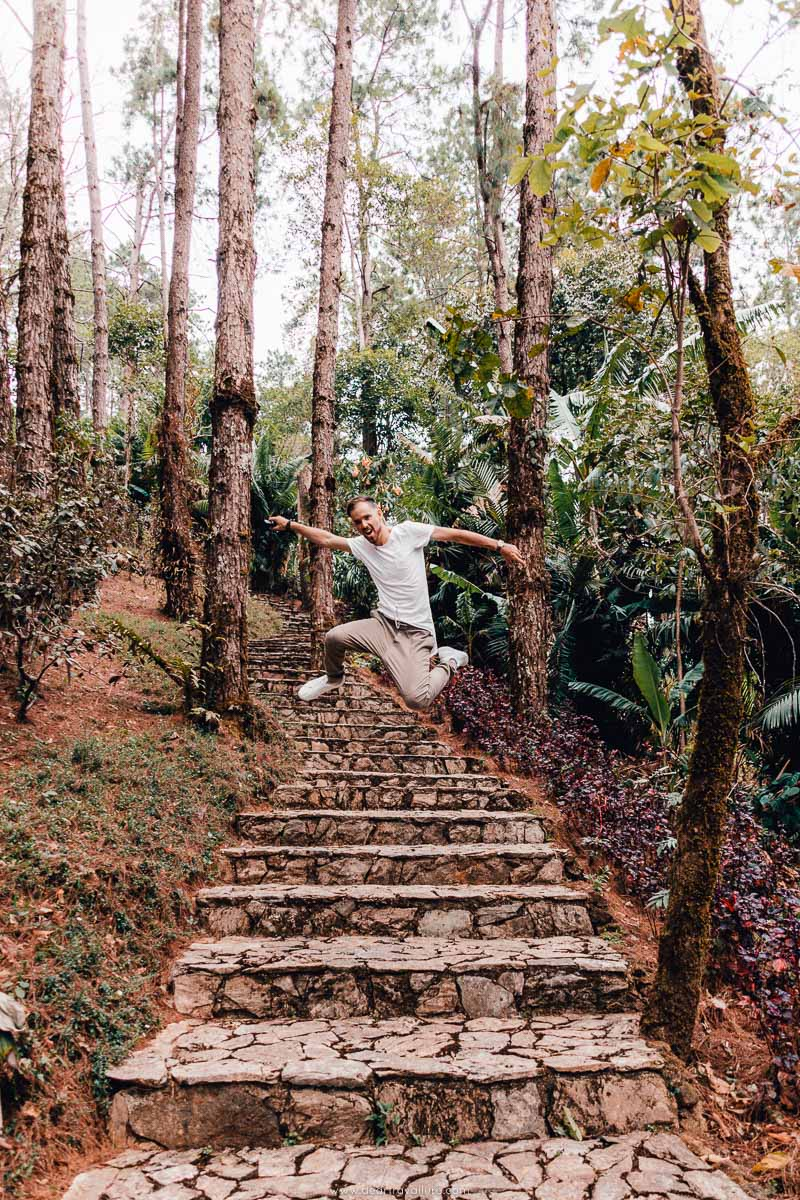 Byron at the Mae Fah Luang Arboretum