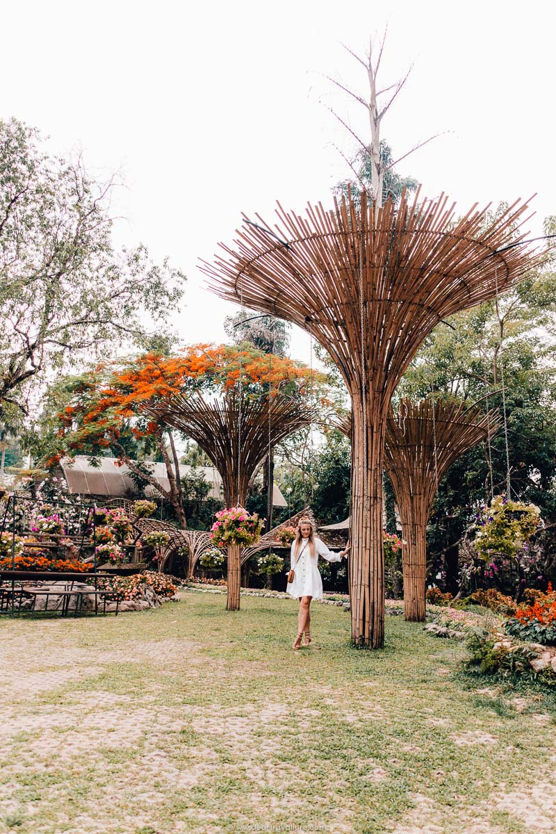 Tammy at The Mae Fah Luang Gardens