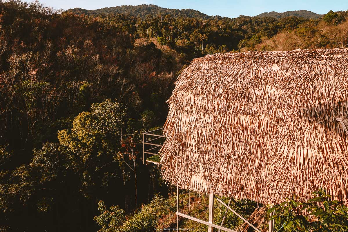 A small accommodation option at the Kuan Dancing Bird Viewpoint