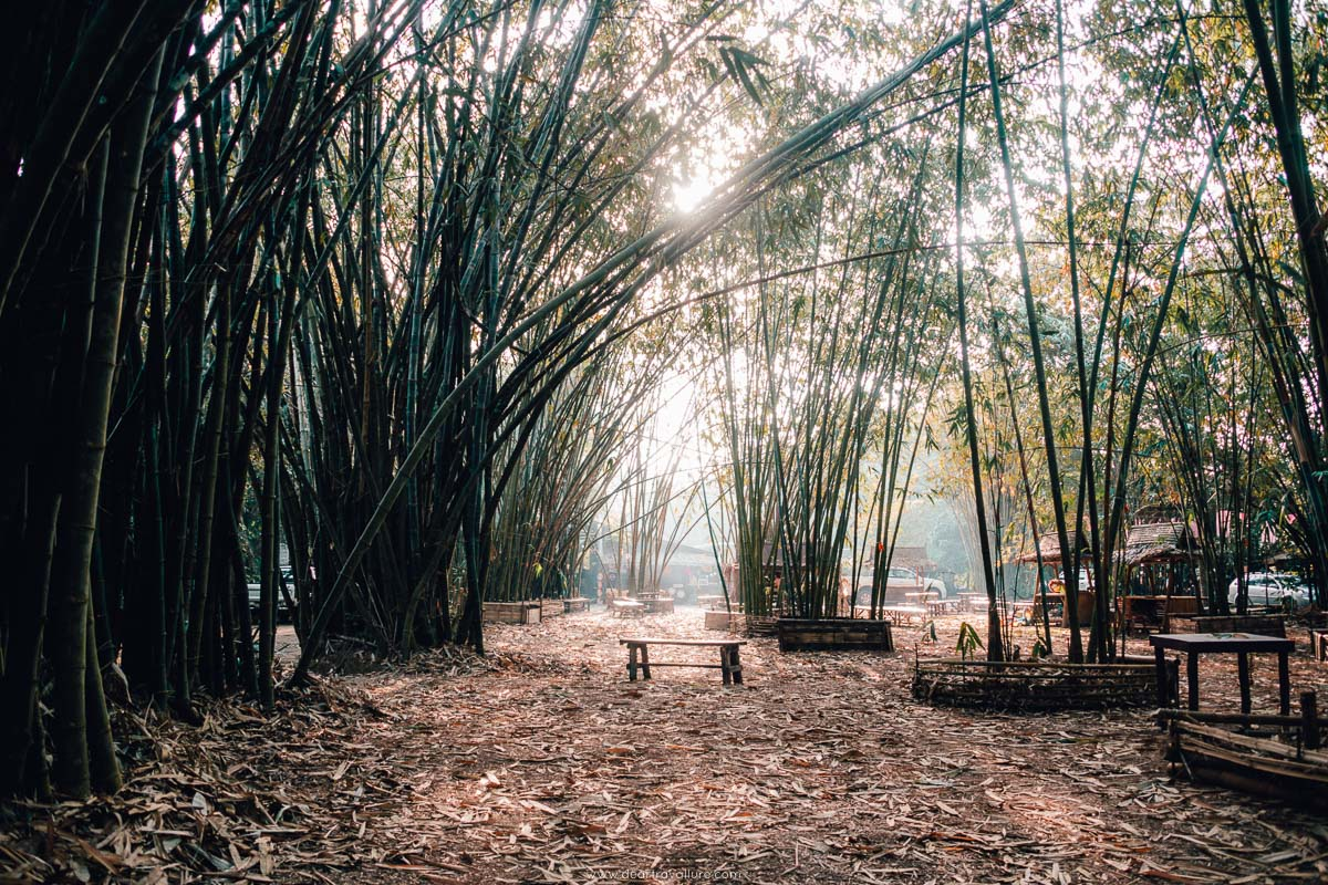 The Bamboo Market before people arrive in the morning