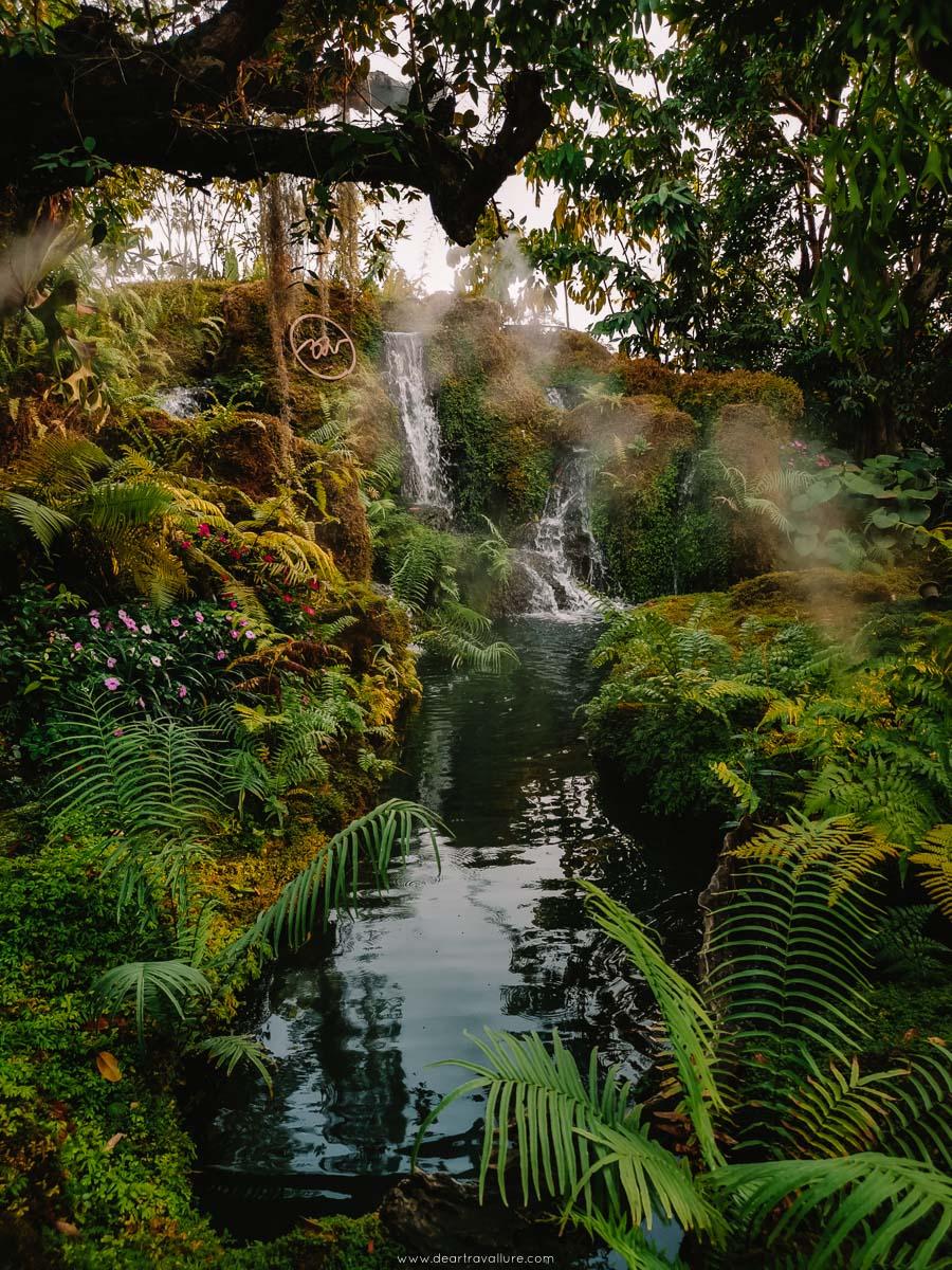 The Mystical Lagoon at Chom Café