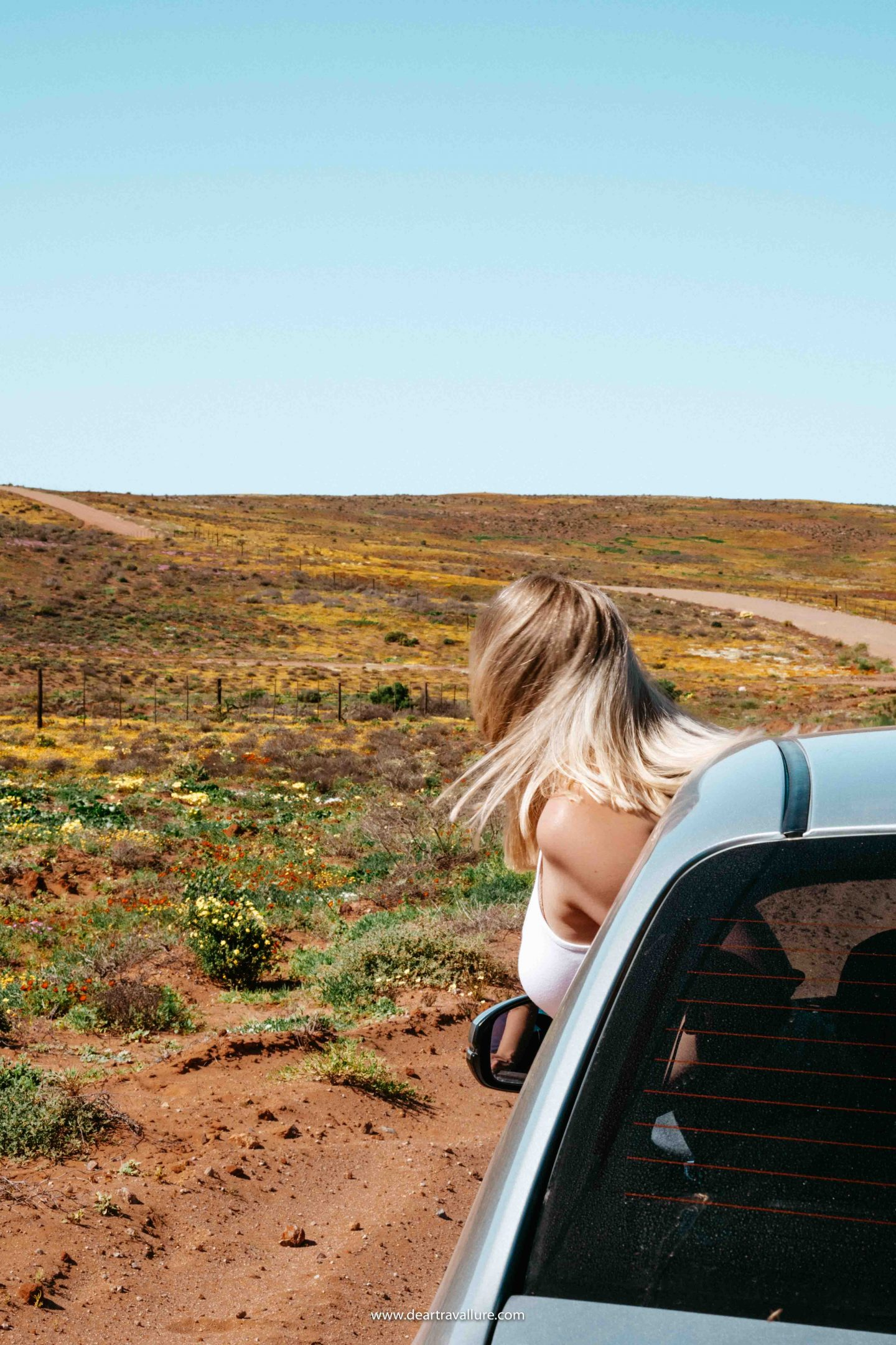 Tammy looking out of the car window at the wildflowers