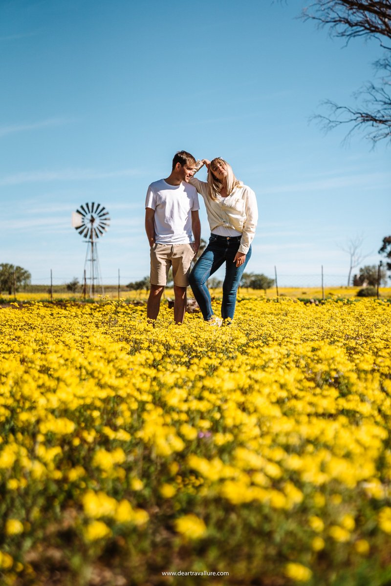 Byron And Tammy Standing Near Yellow Flowers And A Windmill In The Hantam Botanical Gardens