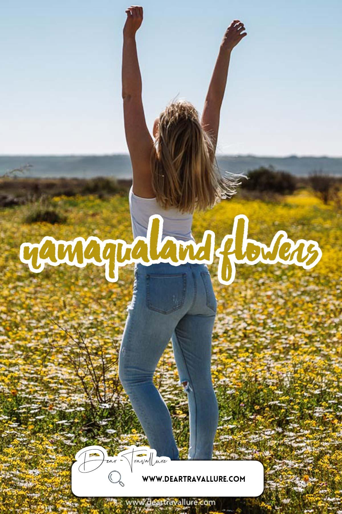 Namaqualand Flower Route - Pinterest Image